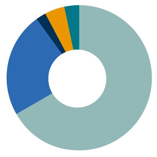 Gráfico investimentos por segmentos - Novembro 2020